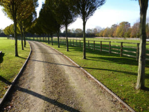 Stockdale Fencing | Wooden Fencing | Roadside Fencing