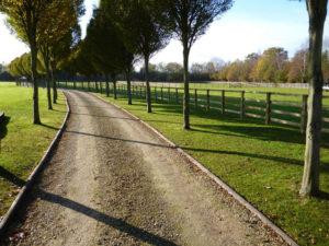 Stockdale Fencing | Wooden Fencing | Roadside Fencing
