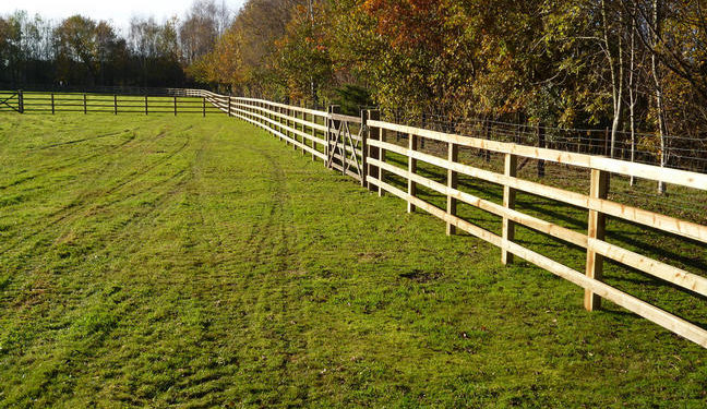 Stockdale Fencing | Wooden Fencing | Fence in a Field