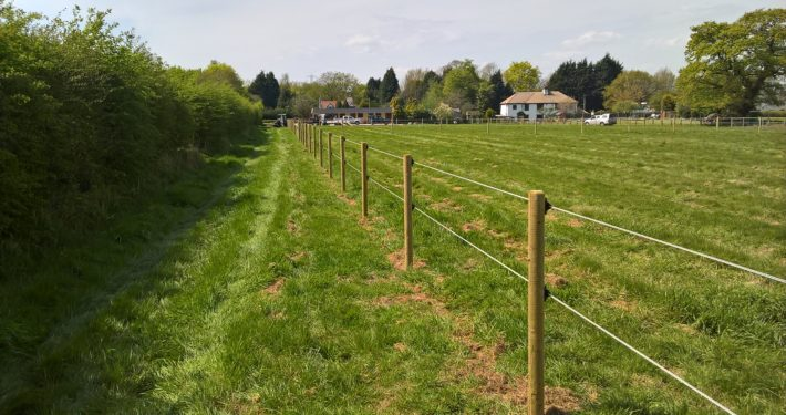 Stockdale Fencing | Horse Electric Hotcote | fence