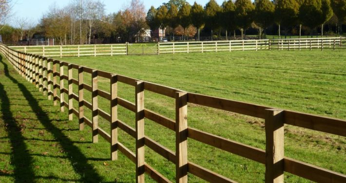 Stockdale Fencing | Post and Rail Fence | fence