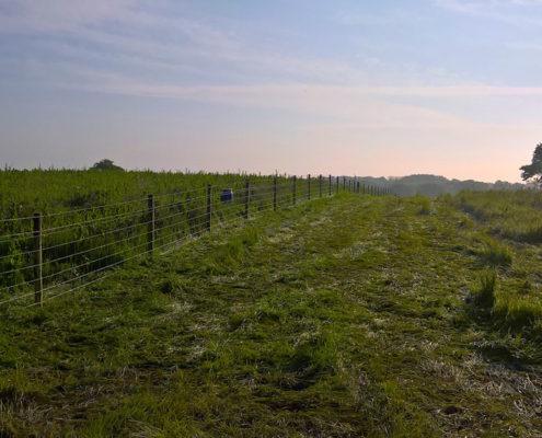 Stockdale Fencing | Fencing and Gates | Calverhall Shropshire