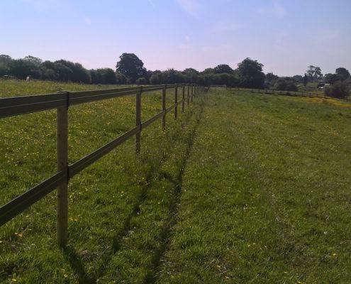 Stockdale Fencing   Horse Rail Fencing   Nantwich field