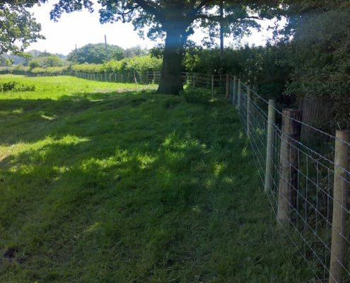 Stockdale Fencing | Post and Chain Fencing | Calverhall, Shropshire
