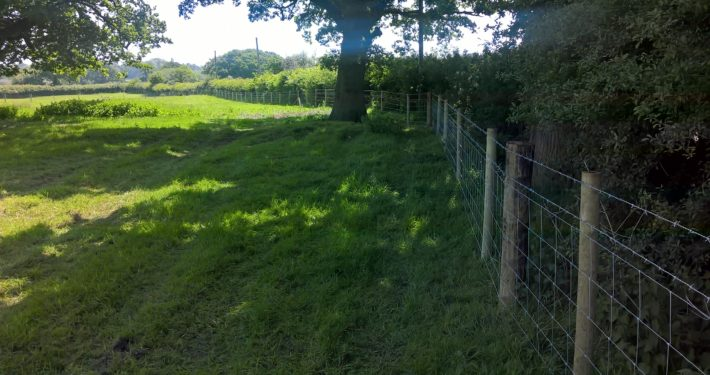 Stockdale Fencing | Livestock fence | fence