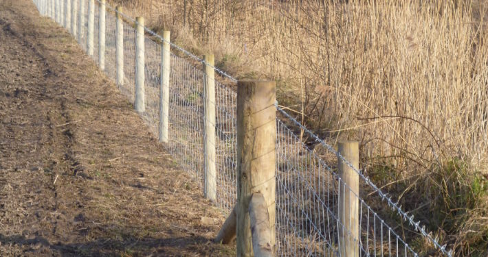 Stockdale Fencing | Livestock metal fencing | Scrub and fence