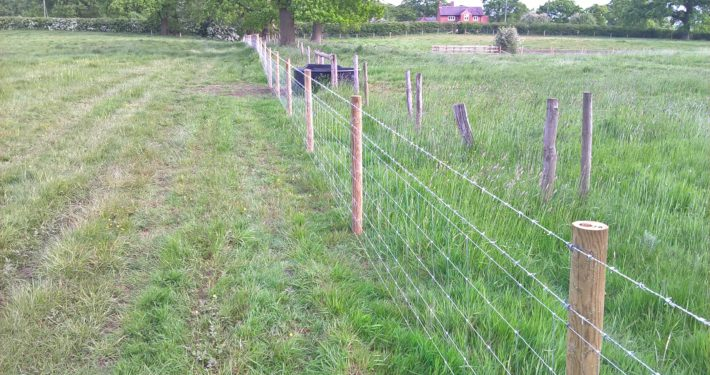 Stockdale Fencing | Livestock fencing | Field and fence