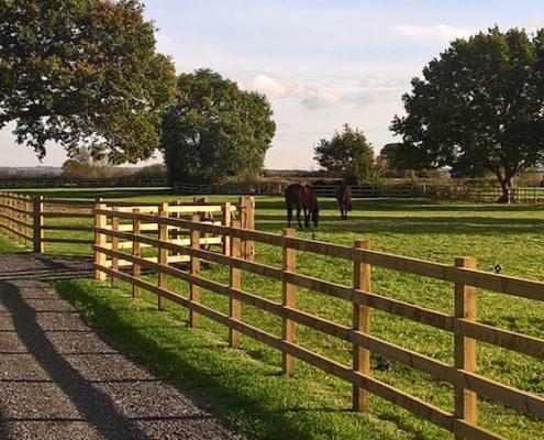 Stockdale Fencing | Wooden Fencing | Horse Fencing
