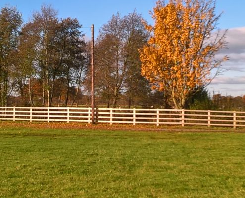 Stockdale Fencing | Post and Rail Wooden Fencing | Royal Cheshire Show