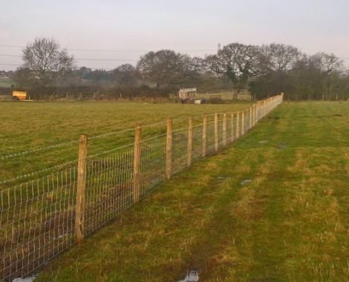 Stockdale Fencing | Wire Livestock Fencing | Dunham on the Hill