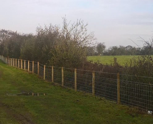 Stockdale Fencing | Wire Fencing | Dunham on the Hill