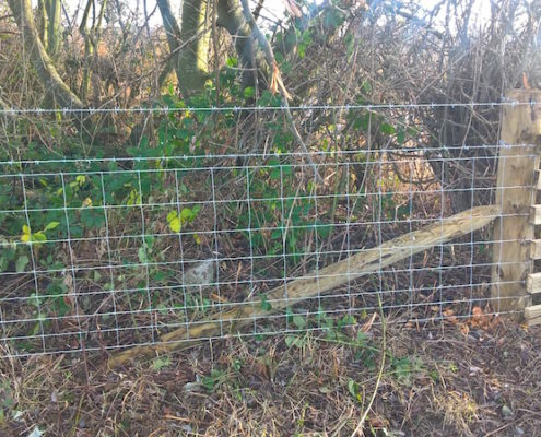 Stockdale Fencing | Livestock Fencing | Dunham on the Hill