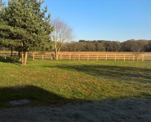Stockdale Fencing | Post and Rail Fencing | Over Peover