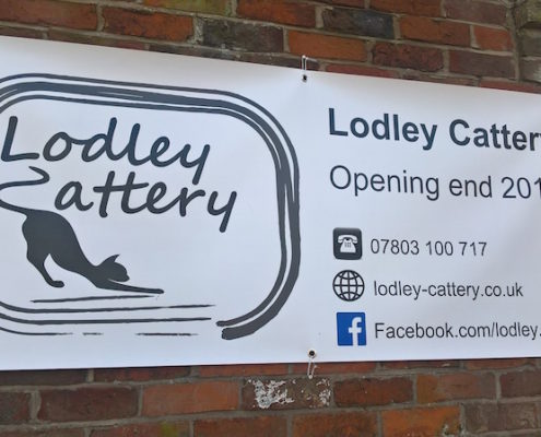 Stockdale Fencing | Post and Rail Fencing | Lodley Cattery