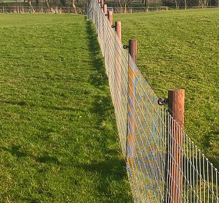 Stockdale Fencing | Wire Fencing | Fence in Field