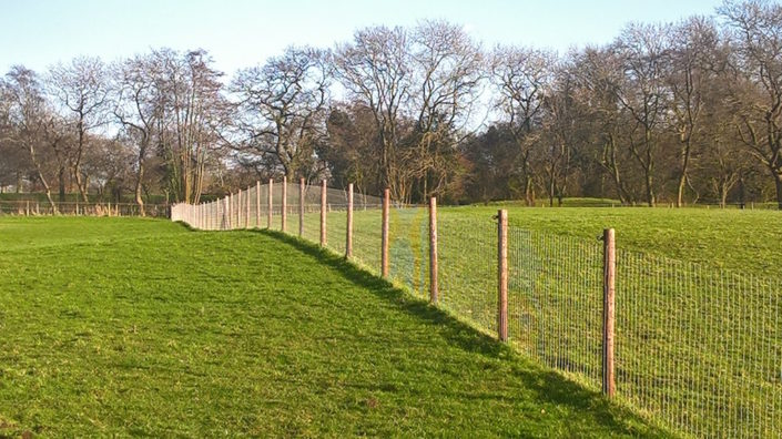 Stockdale Fencing | Cattle Fencing | Fence in Field