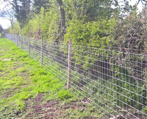 Stockdale Fencing | Horse Fencing | Horse Netting