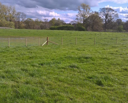 Stockdale Fencing | Horse Fencing | Fence In Field
