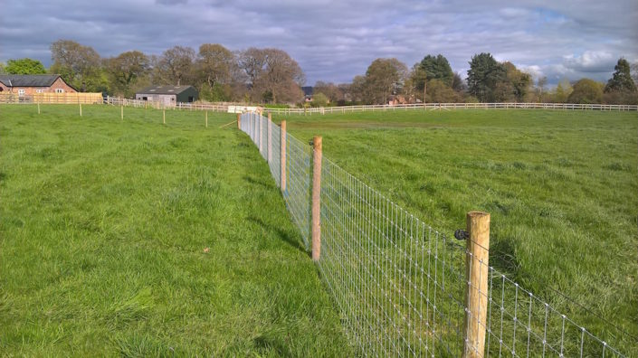 Stockdale Fencing | Horse Fencing | Wire Fence in Field