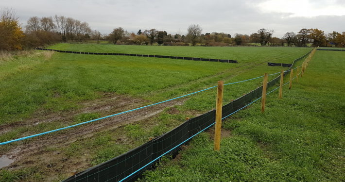Stockdale Fencing | Newt Fencing | Laying Fencing