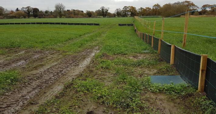 Stockdale Fencing | Newt and Horse Fencing | Field