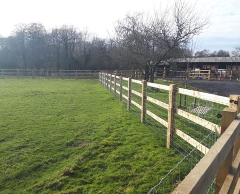 Stockdale Fencing | Wire Netting Fencing | Fences