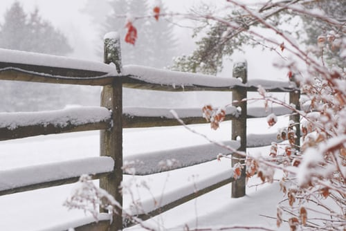 Stockdale Fencing | Post and Rail Fencing | Snowy Fence