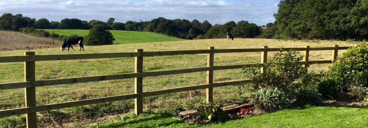 Stockdale Fencing | Post and Rail Fencing | Fence and field