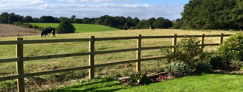Stockdale Fencing   Post and Rail Fencing   Fence and field