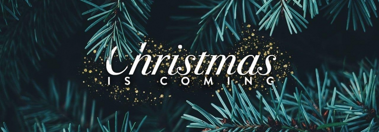 Stockdale Fencing | Post and Rail Fencing | Christmas tree